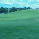 woodstock field 1