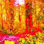 fantasy forest 2014