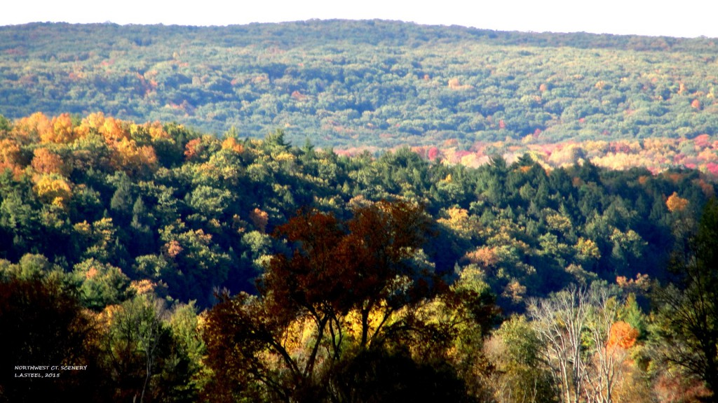 NW CT. SCENERY 2015