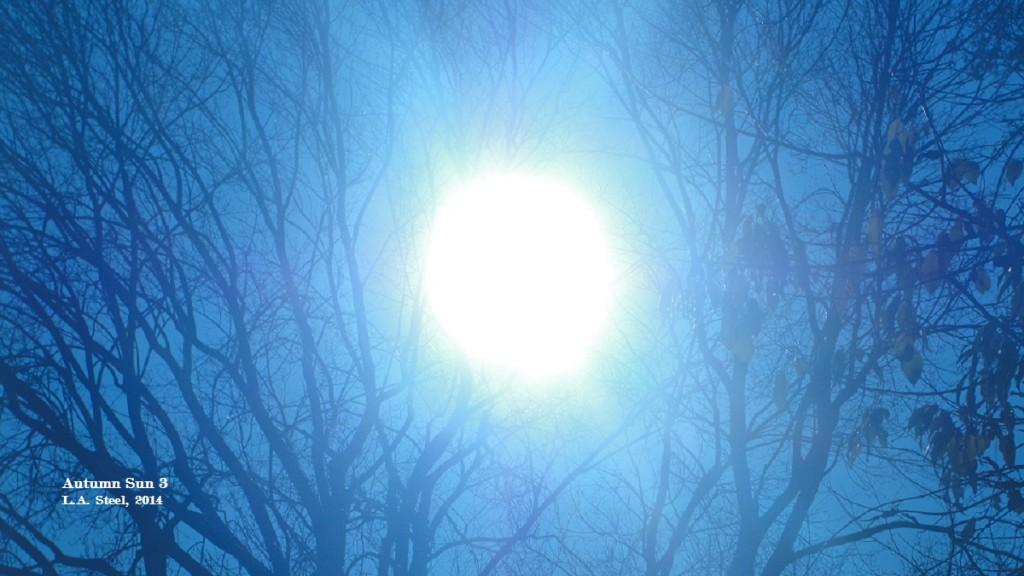 autmn sun 3