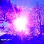 autumn sun 5