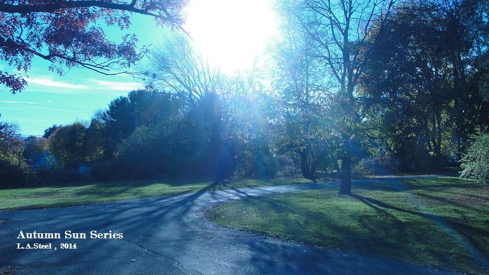 autumn sun series 2014