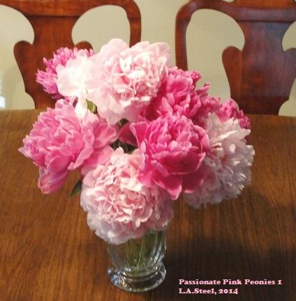 passionate pink peonies 1