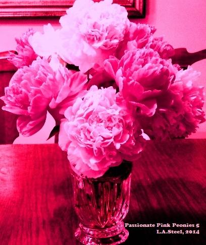 passionate pink peonies 5