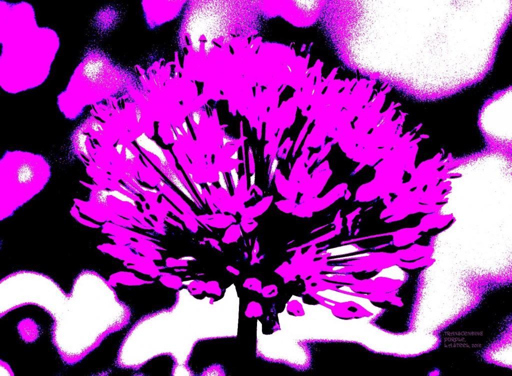 transcending purple 2016
