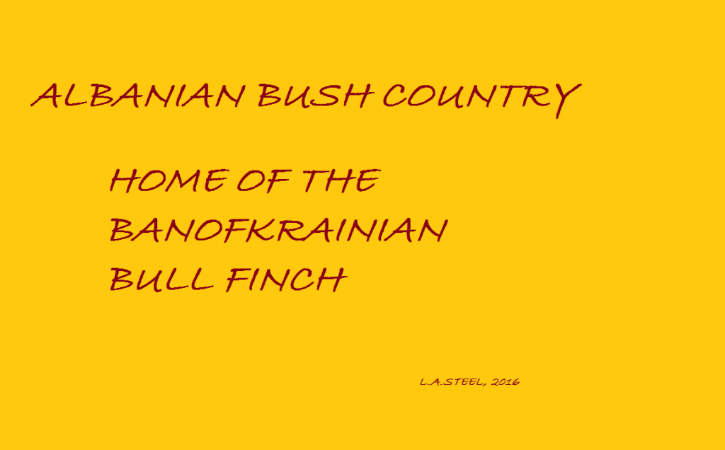 albainian-bush-country-2016