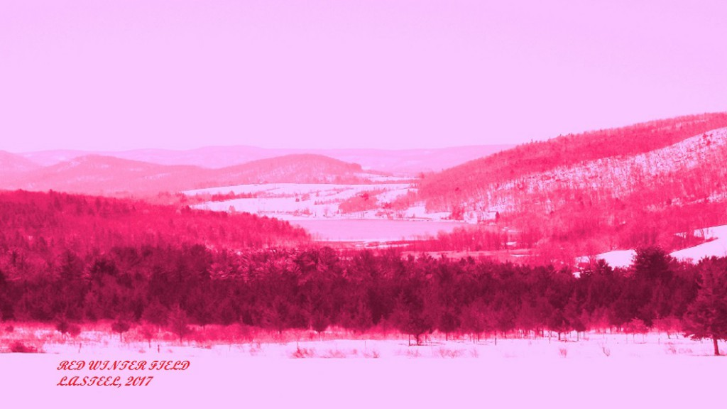 red winter field 2017