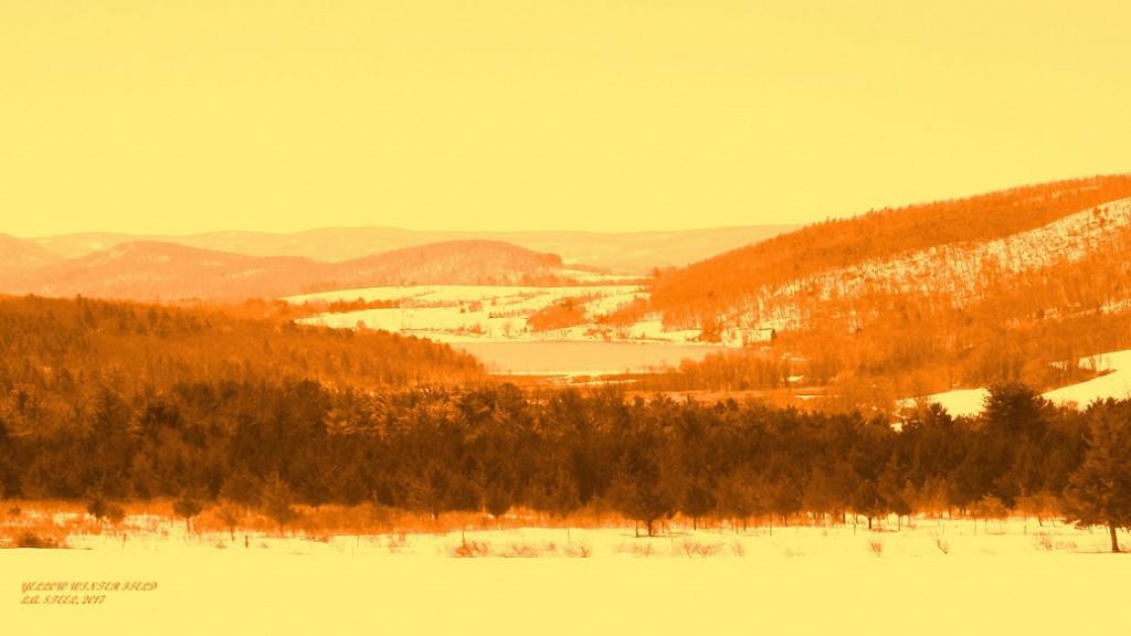 yellow winter field 2017
