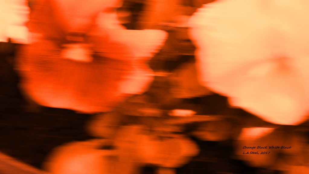 orange black white blaze 2017