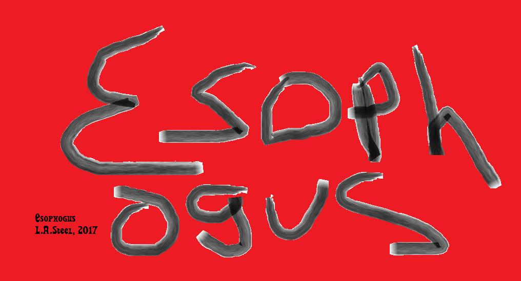 esophogus 2017