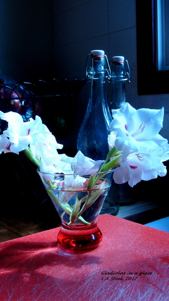 gladiolas in a glass 2 2017