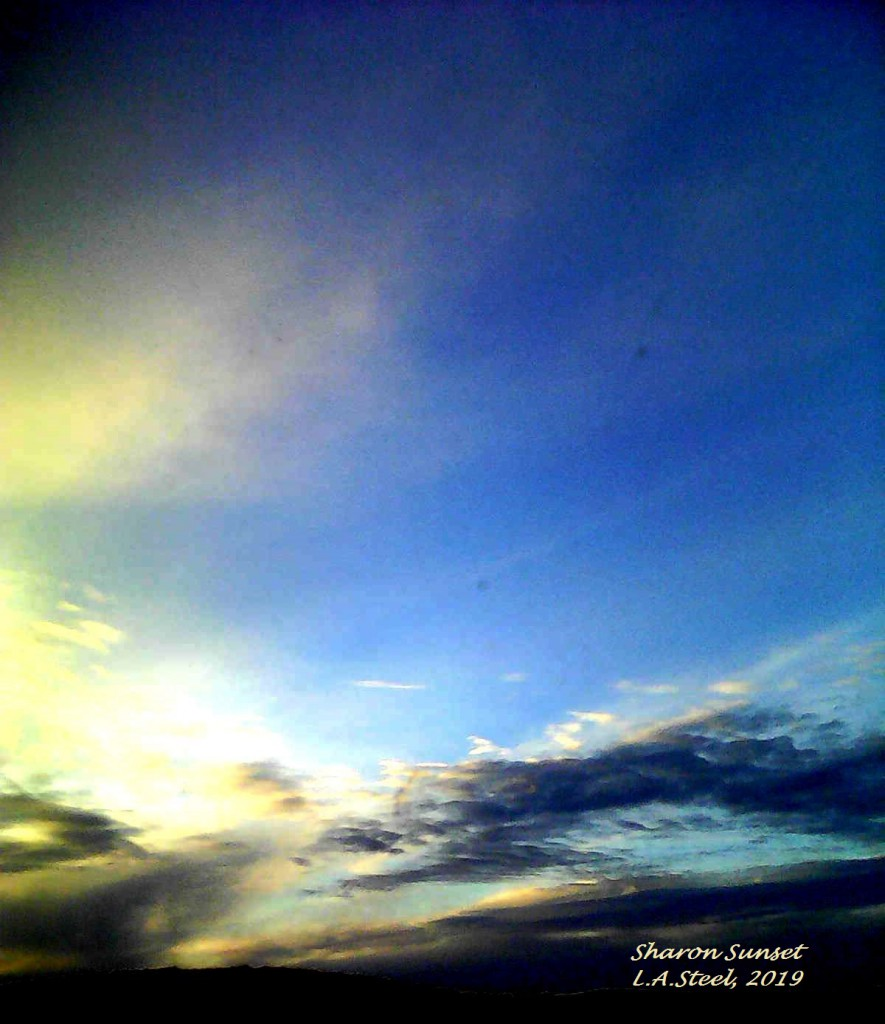 sharon sunset 5 2019