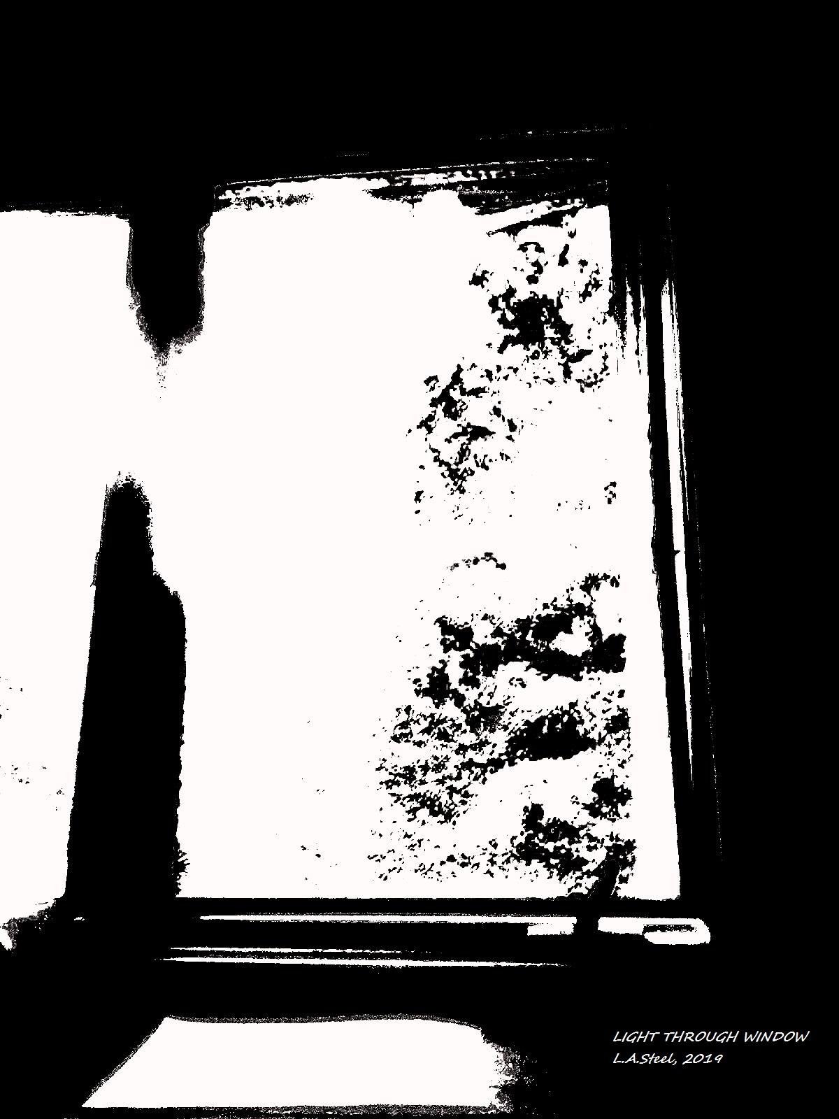 light trough window 4 2019