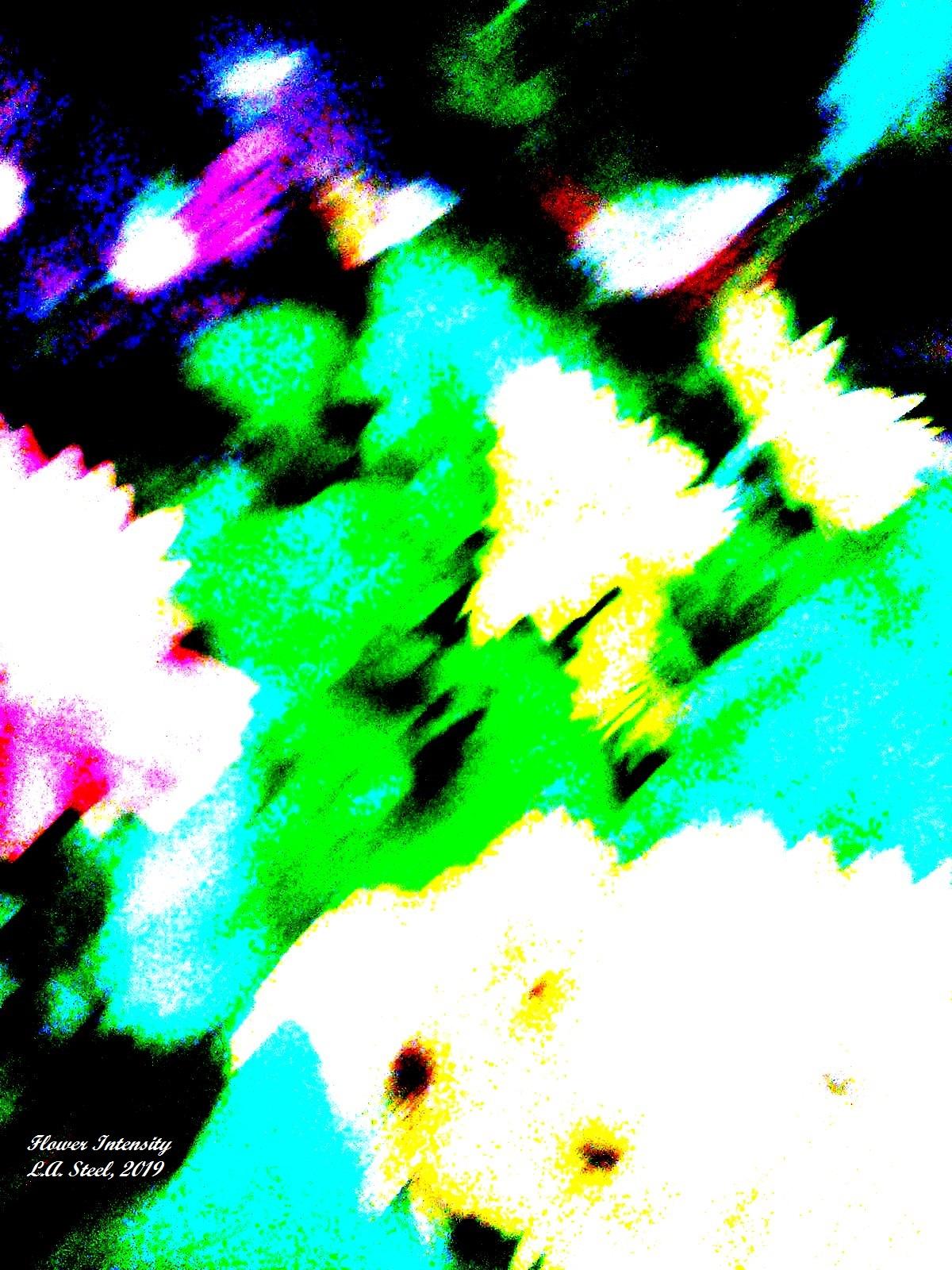 flower intensity 2 2019
