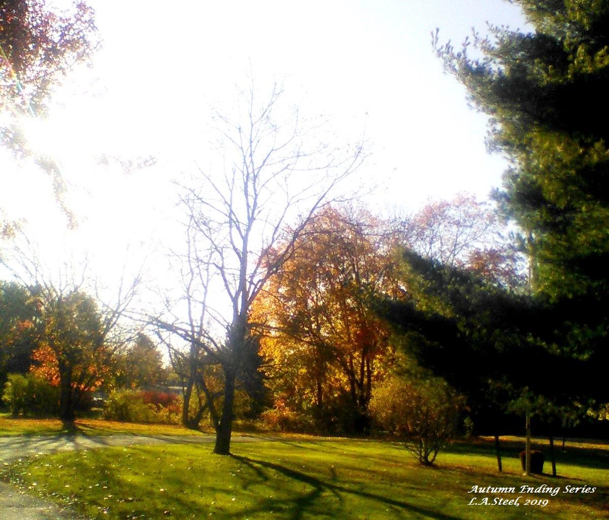 autumn ending 2019 2