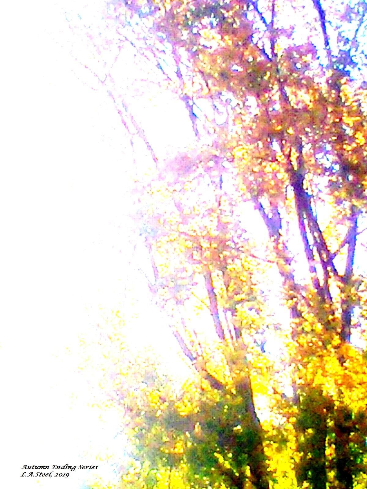 autumn ending 2019 7