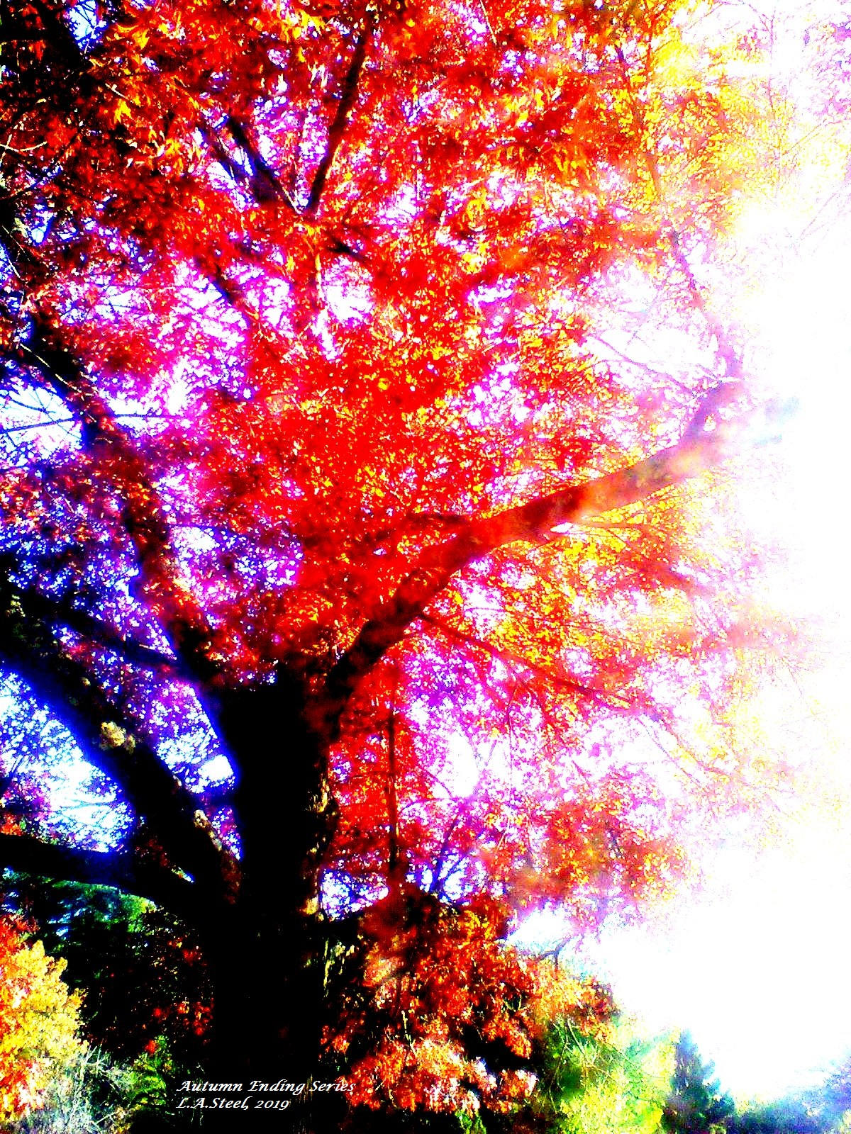 autumn ending 6 2019