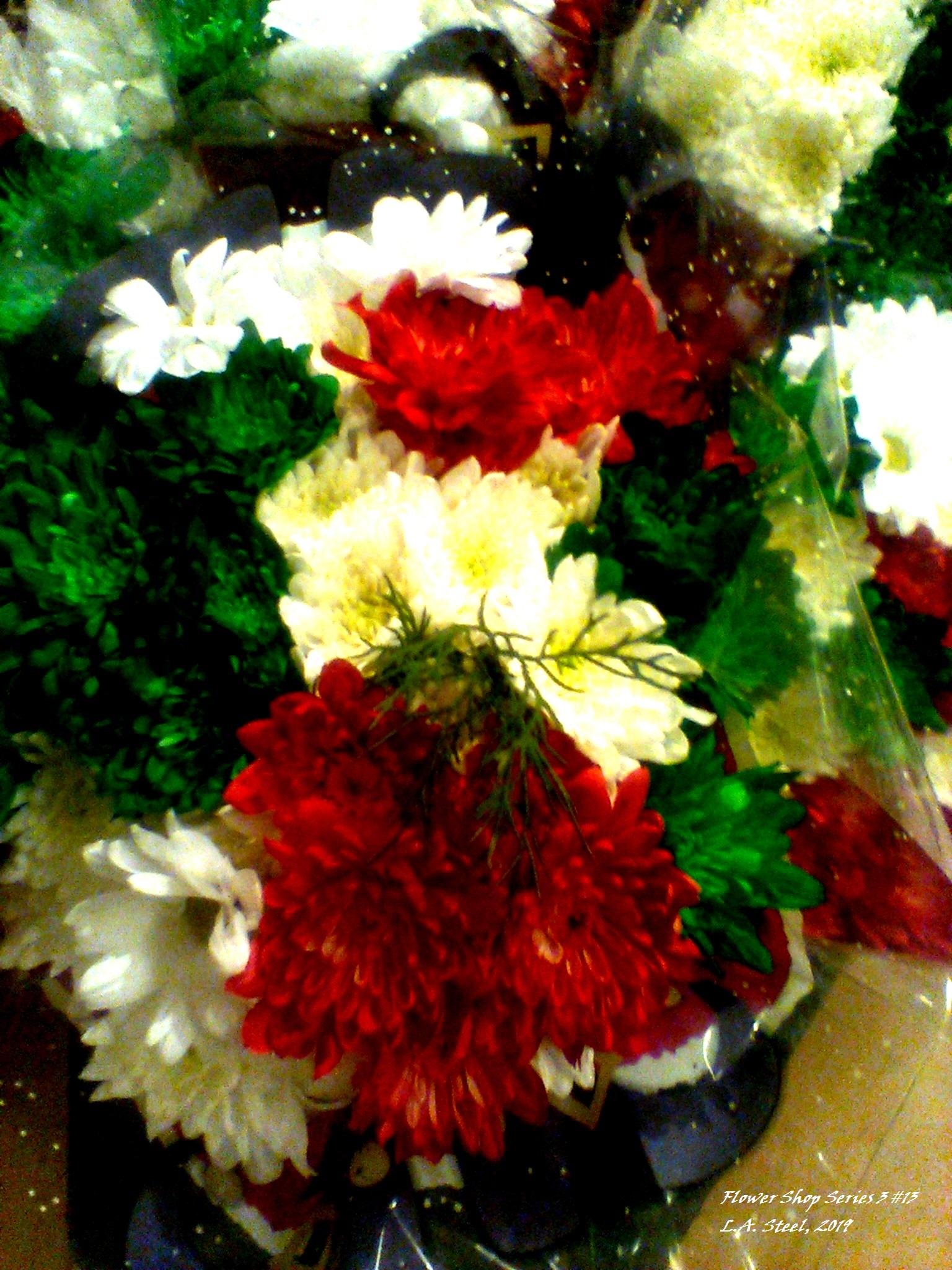 flower shop series 3 13 2019