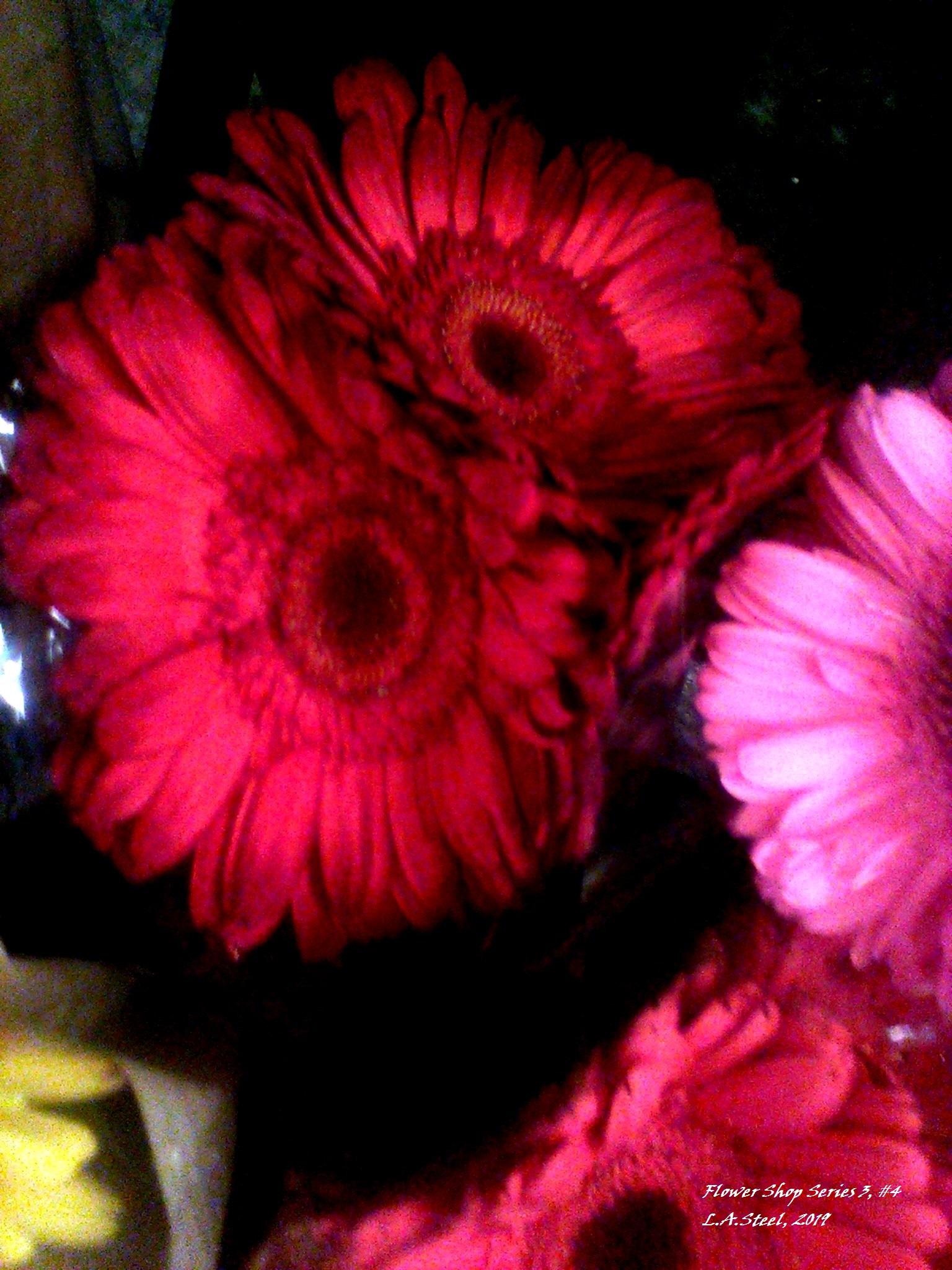flower shop series 3 4 2019