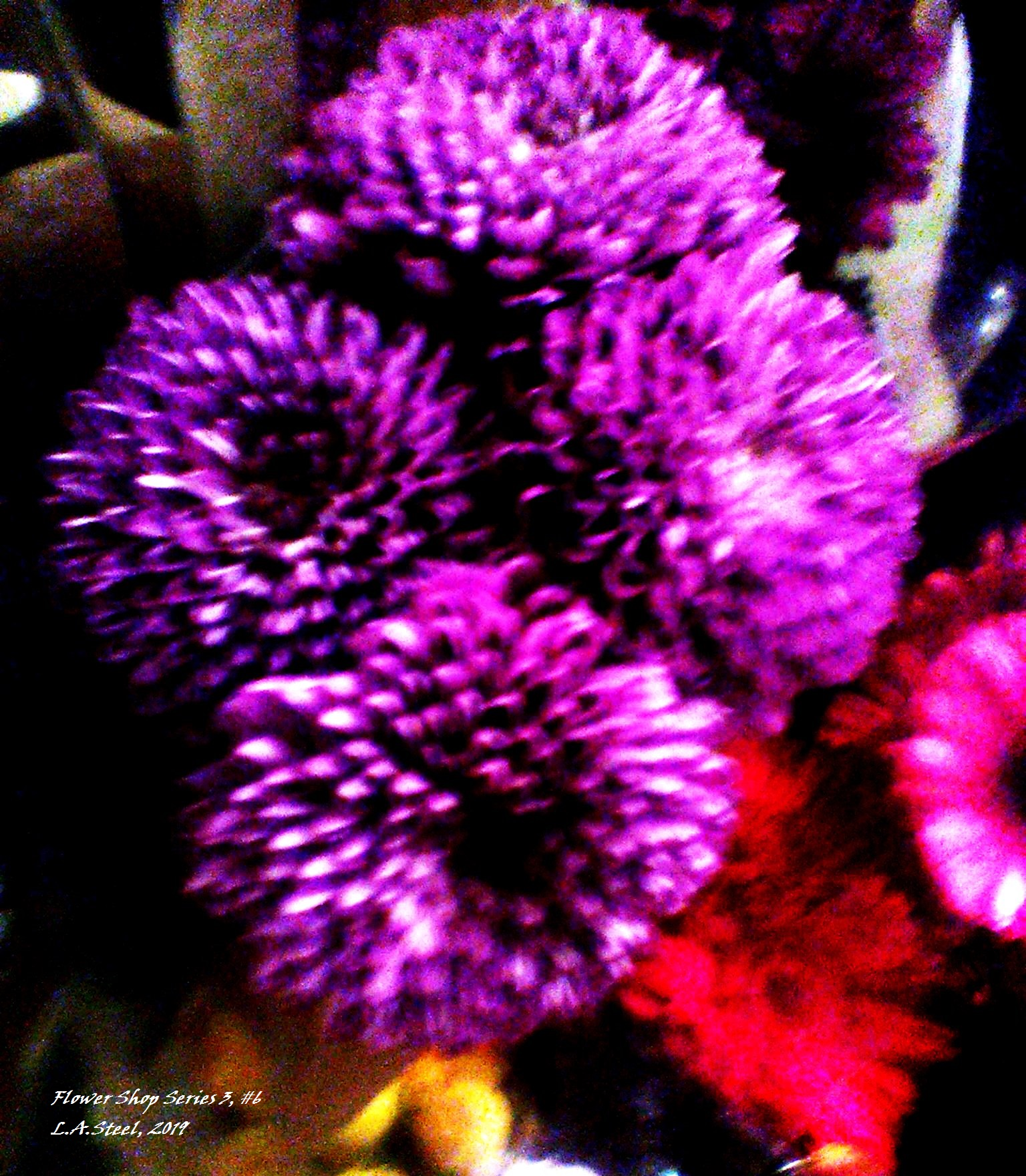 flower shop series 3 6 2019