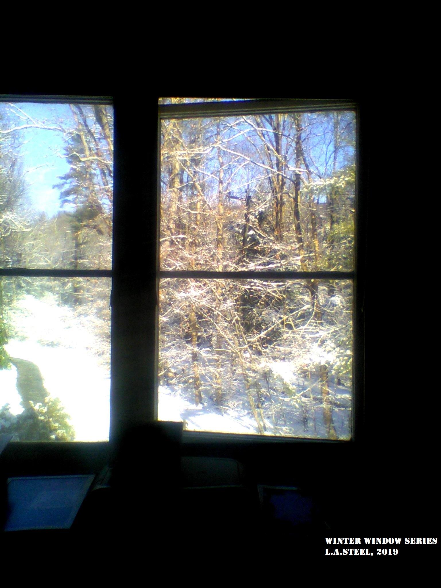 winter window 1 2019