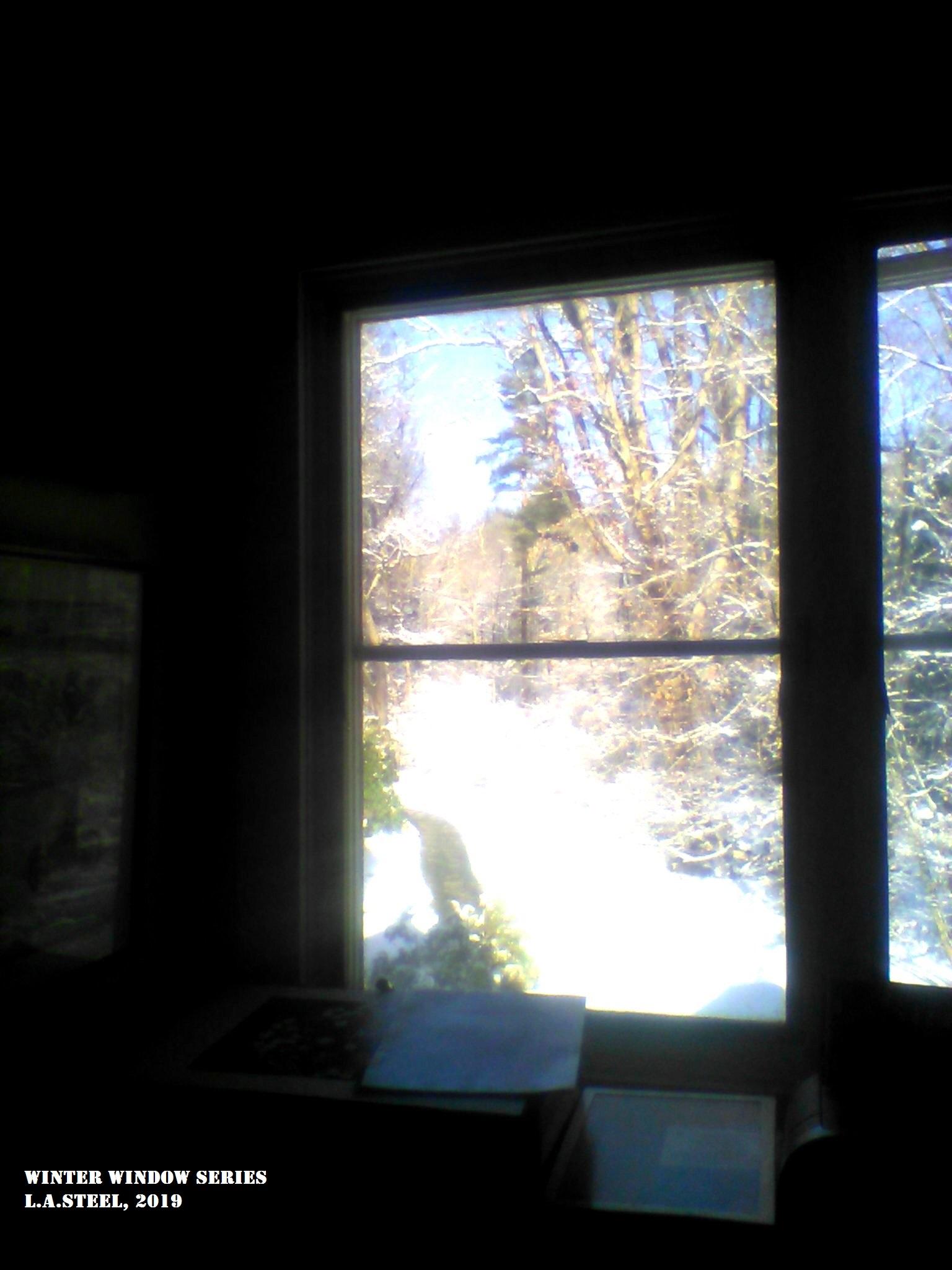 winter window 2 2019