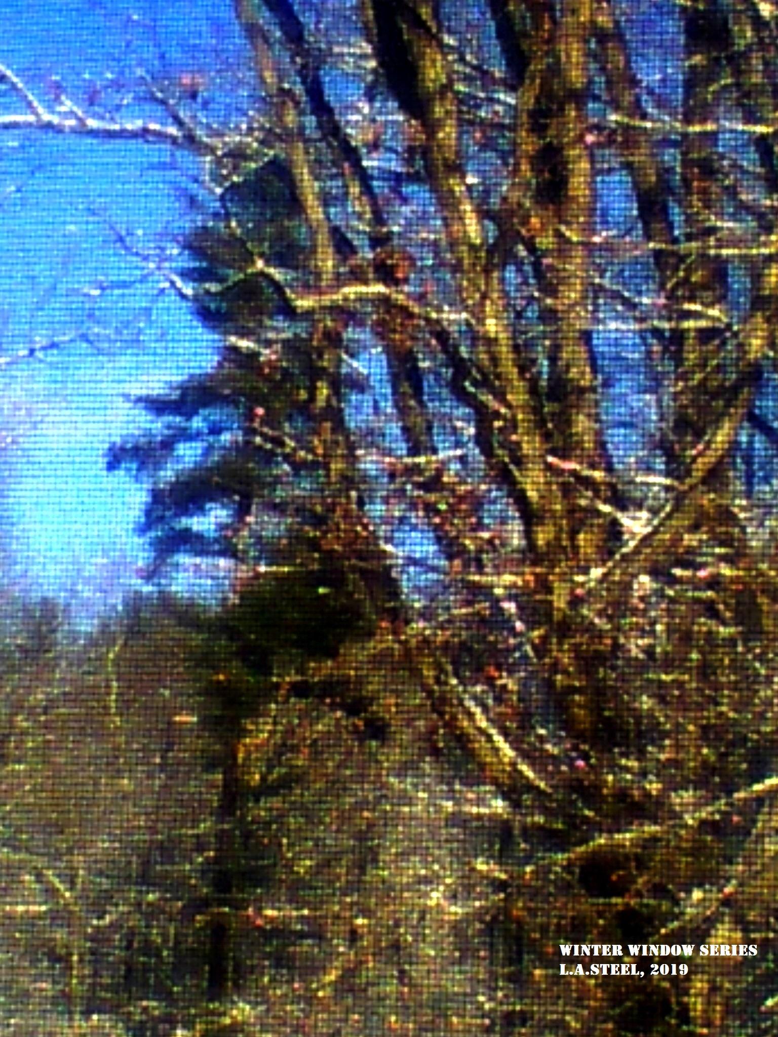 winter window 3 2019