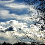 cloud scape 1 2020