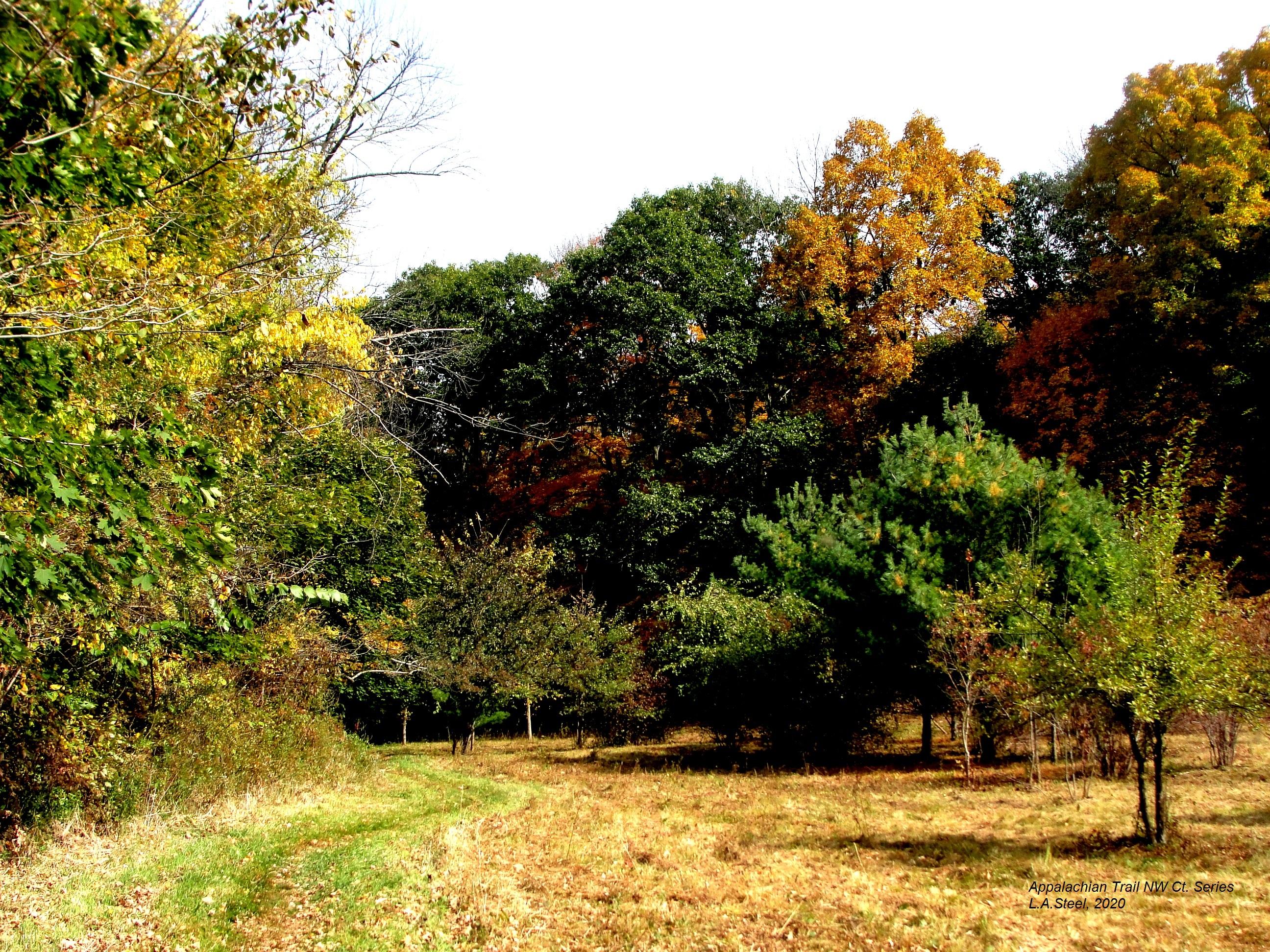 appalachian trail nw ct series 1 2020